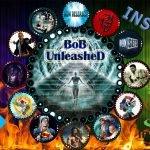 How to Install BoB UnleasheD Kodi Add-on Visual Tutorial