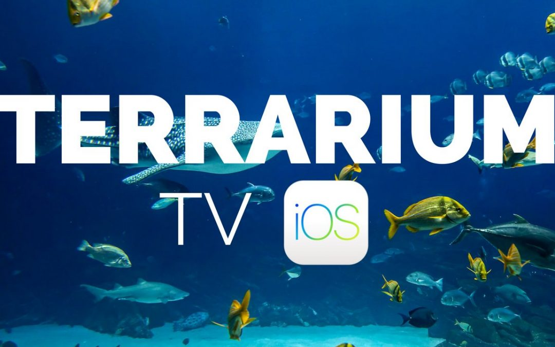 Terrarium TV iOS Free Installation Guide