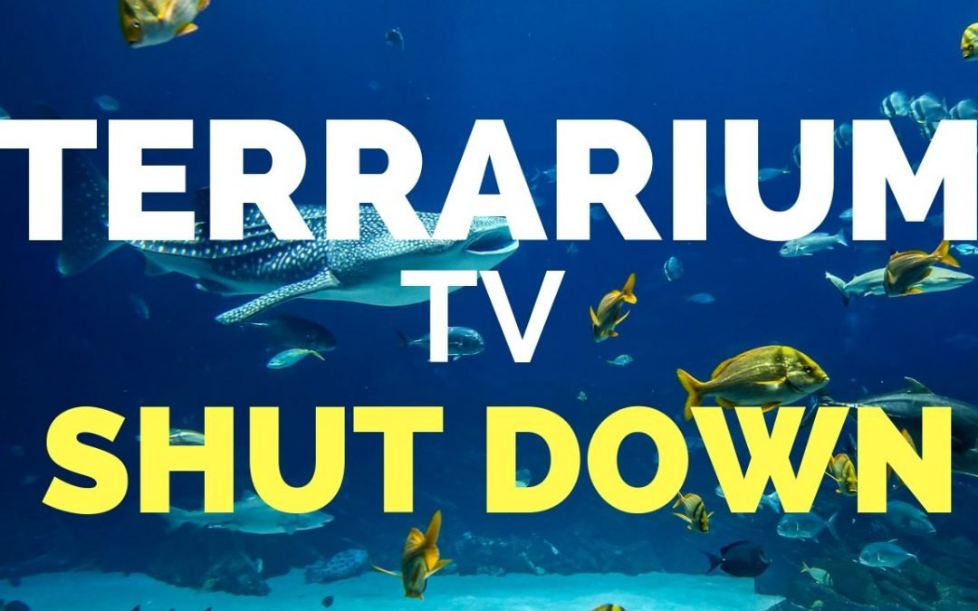 Terrarium TV Website Down?