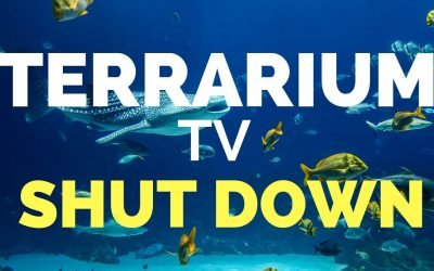 Terrarium TV Shut Down!  Here's Why + How to Install Alternatives