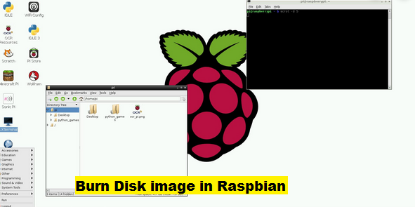 burn disk image in raspbian